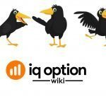 crows iq option