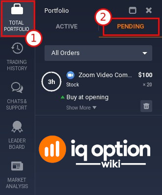Pending order is visible in Portfolio tab