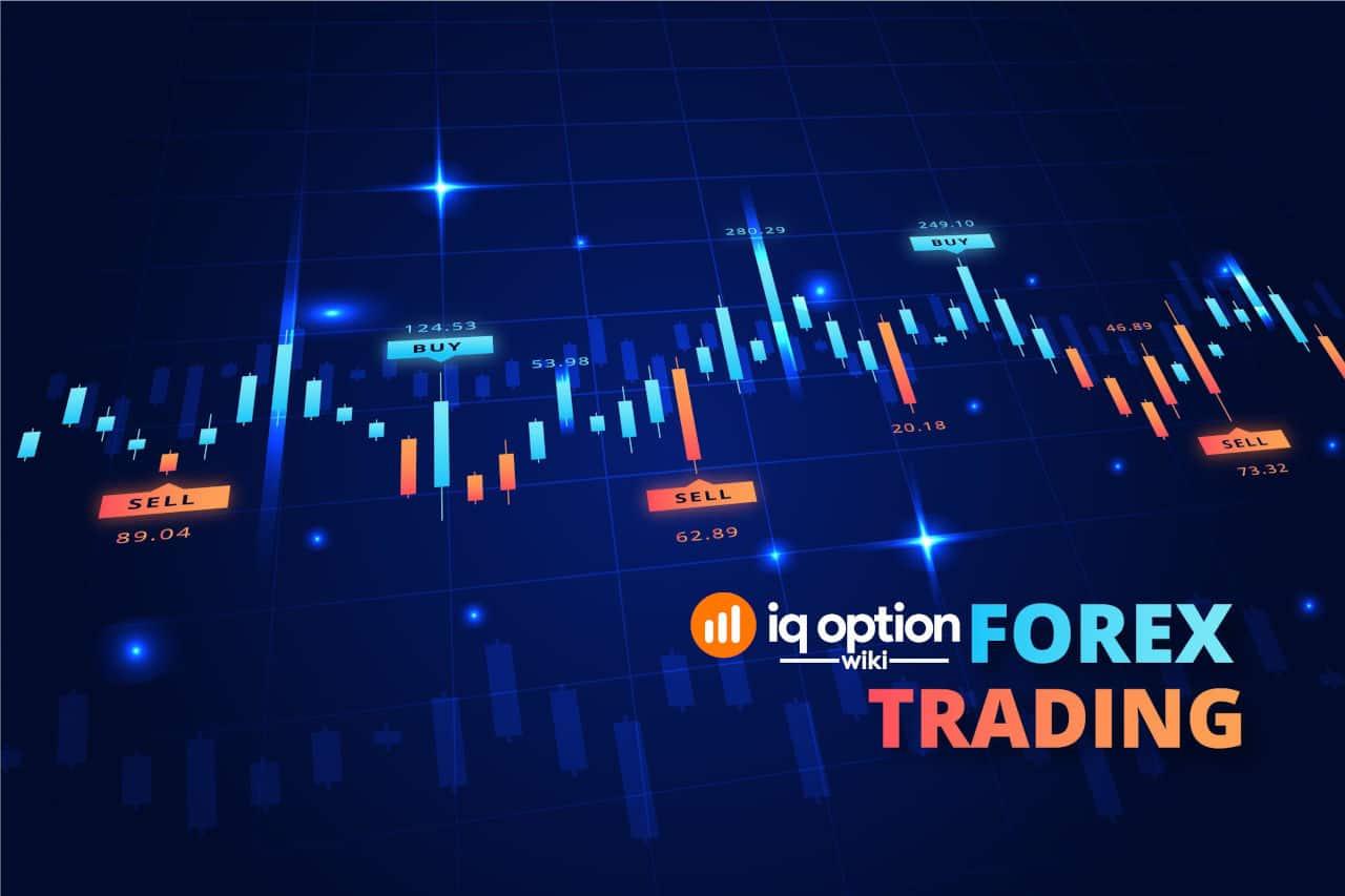 forex trading IQ Option